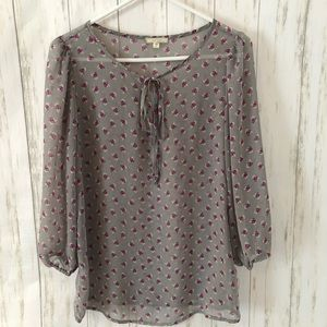 Pleione Sheer Gray blouse Small